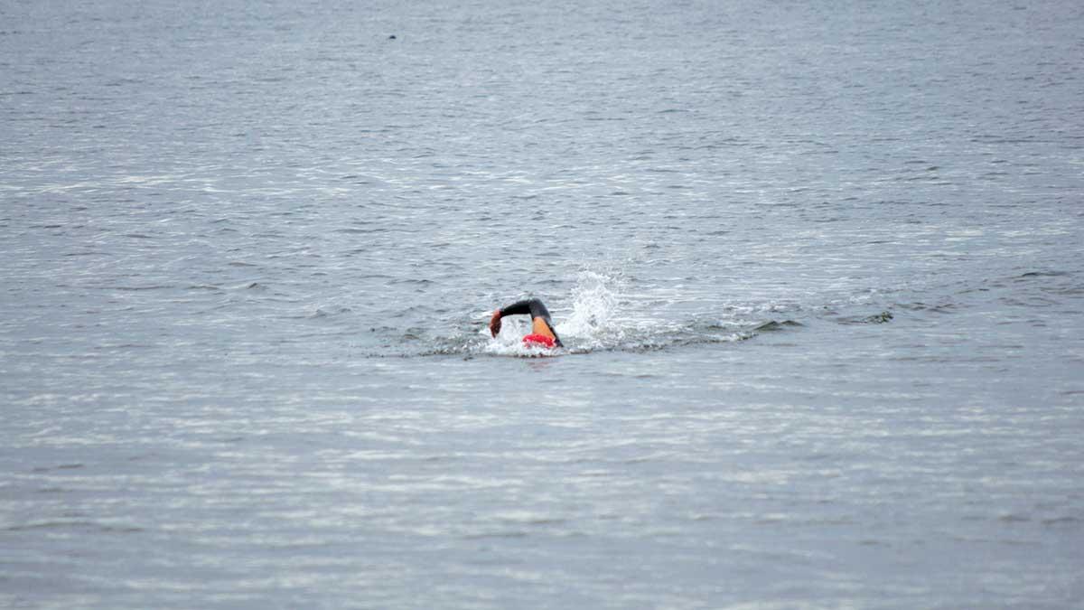 Coho Swim Event
